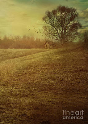 Country Cottage Photograph - House In Field by Mythja Photography