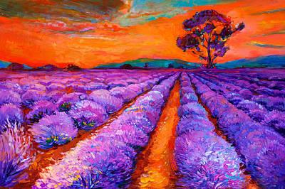Lavender Fields Art Print by Boyan Dimitrov