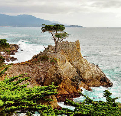 Photograph - 17 Mile Drive - Famous Lone Cypress  by Floyd Snyder