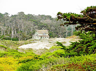 Photograph - 17 Mile Drive Study 1 by Robert Meyers-Lussier