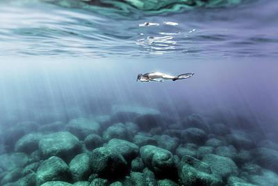 Menorca Photograph - 170611-6522 by 27mm