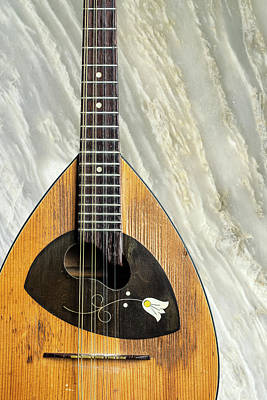 Photograph - 17.1845 Framus Mandolin by M K  Miller