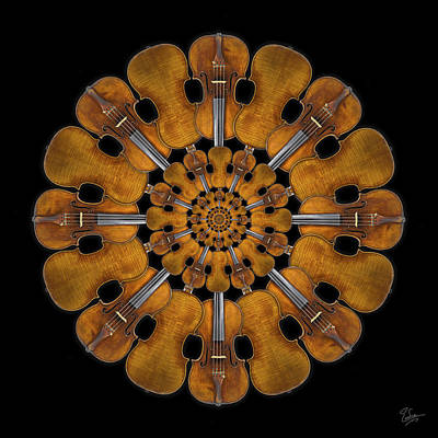 Violin Digital Art - 1728 Stradivarius Rosette by Endre Balogh