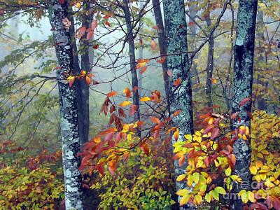 Cranberry Wilderness Art Print by Thomas R Fletcher