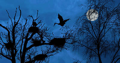 Photograph - Heronry At Full Moon by Arterra Picture Library