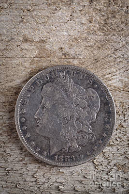 Old Western Photograph - 1883 Morgan Silver Dollar by Edward Fielding