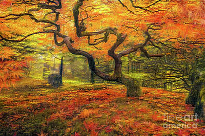 Abstract Japanese Maple Tree Art Print