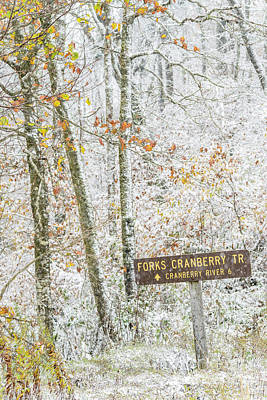 West Fork Photograph - Cranberry Wilderness by Thomas R Fletcher
