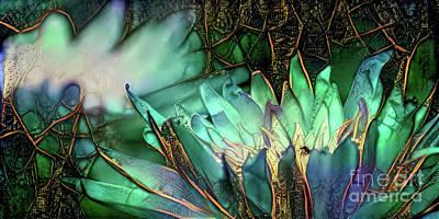Jeweled Water Lilies Art Print