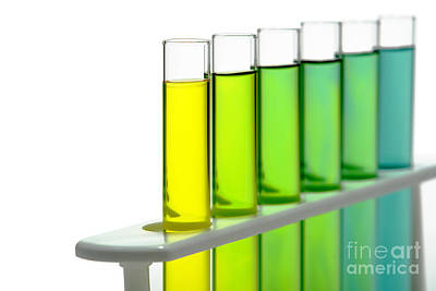 Laboratory Test Tubes In Science Research Lab Art Print by Olivier Le Queinec