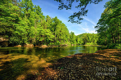 Photograph - Williams River Spring by Thomas R Fletcher
