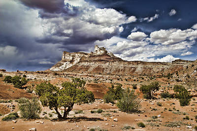 Photograph - San Rafael Swell by Mark Smith