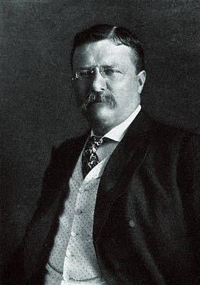 Painting - 1904 President Theodore Roosevelt by Historic Image