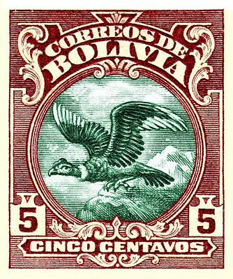 Condor Digital Art - 1928 Bolivia Andean Condor Postage Stamp by Retro Graphics