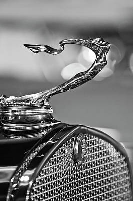 1930 Cadillac Roadster Hood Ornament 2 Art Print by Jill Reger