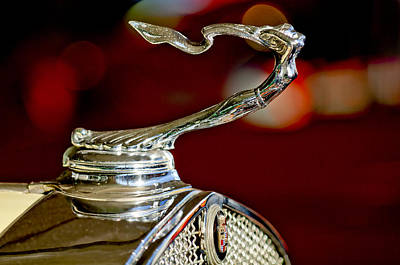 Hoodies Photograph - 1931 Cadillac 355 A Roadster Hood Ornament by Jill Reger