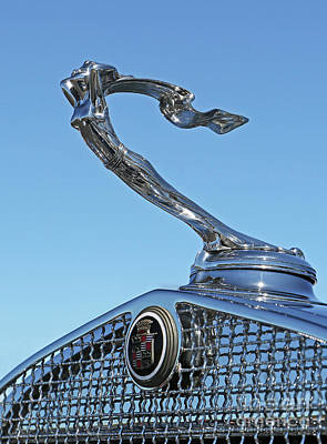 Photograph - 1931 Cadillac Hood Ornament by Kevin McCarthy