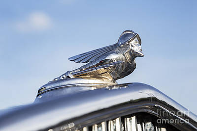 Photograph - 1931 Desoto Hood Ornament by Dennis Hedberg