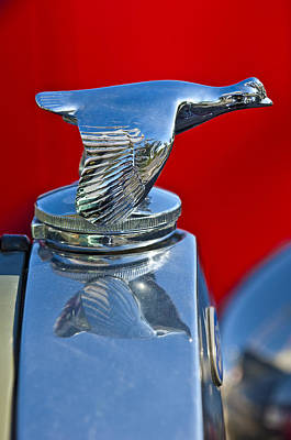 Hoodie Photograph - 1931 Ford Model A Quail Hood Ornament by Jill Reger