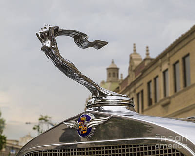Photograph - 1932 Cadillac Hood Ornament by Dennis Hedberg