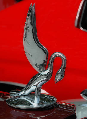Photograph - 1933 Packard Goose  Hood Ornament by Ginger Wakem