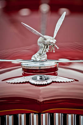 Photograph - 1934 Bentley 3.5-litre Drophead Coupe Hood Ornament by Jill Reger