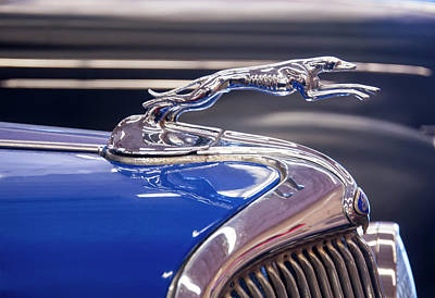 Car Mascot Digital Art - 1934  Ford Greyhound Hood Ornament by Chris Flees