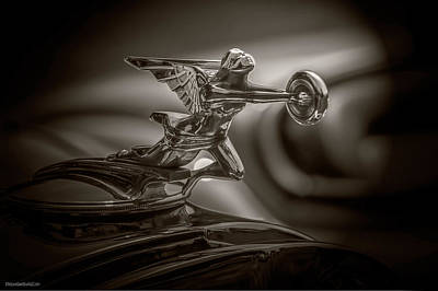 Photograph - 1934 Packard Super Eight Hood Ornament by LeeAnn McLaneGoetz McLaneGoetzStudioLLCcom