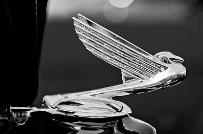Best Stock Photograph - 1935 Chevrolet Hood Ornament 4 by Jill Reger