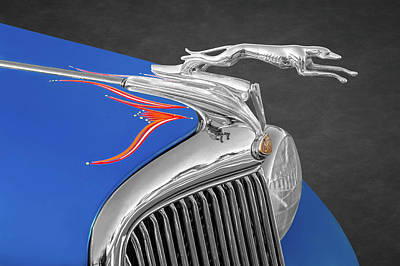 Photograph - 1935 Ford Running Greyhound Hood Ornament   -   1935fordhoodornament173505 by Frank J Benz
