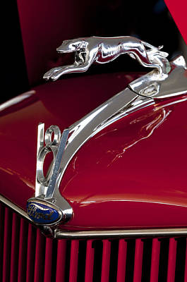 1936 Ford 68 Pickup Hood Ornament Print by Jill Reger