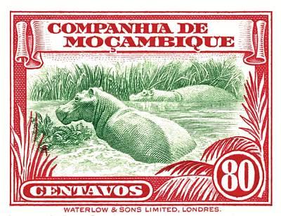Hippopotamus Digital Art - 1937 Mozambique Hippopotamus Stamp by Retro Graphics