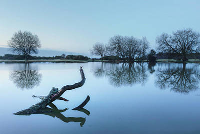 Floods Photograph - New Forest - England by Joana Kruse