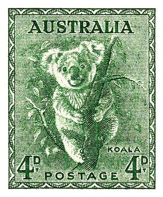 Koala Wall Art - Digital Art -  1940 Australia Koala Postage Stamp by Retro Graphics