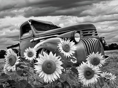 Photograph - 1941 Chevrolet Truck With Sunflowers In Black And White by Gill Billington