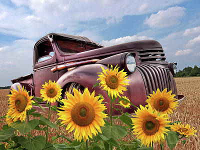 Photograph - 1941 Chevy Truck With Sunflowers by Gill Billington