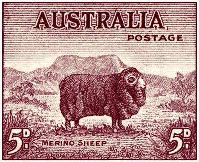 Painting - 1946 Australian Merino Sheep Stamp by Historic Image