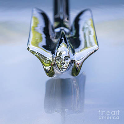 Photograph - 1947 Cadillac Hood Ornament 1 by Dennis Hedberg