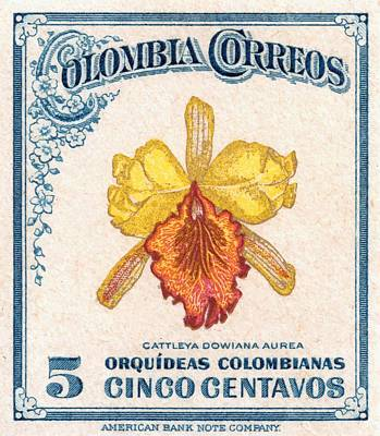 Orchid Digital Art - 1947 Colombia Cattleya Dowiana Orchid Stamp by Retro Graphics