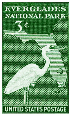 Painting - 1947 Everglades Florida Stamp by Historic Image