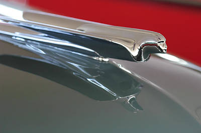 1948 Cadillac Series 62 Hood Ornament Art Print by Jill Reger