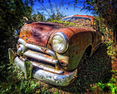 Photograph - 1949 Ford In Decline by Alan Raasch