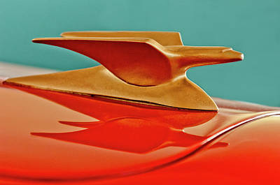 Photograph - 1951 Crosley Hot Shot Hood Ornament 2 by Jill Reger