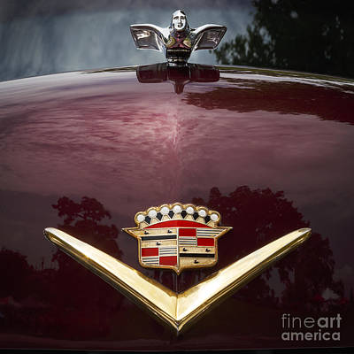 Photograph - 1952 Cadillac by Dennis Hedberg