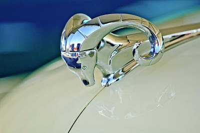 Hoodie Photograph - 1952 Dodge Coronet  Diplomat Club Coupe Hood Ornament by Jill Reger