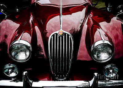 Photograph - 1955 Jaguar by M G Whittingham