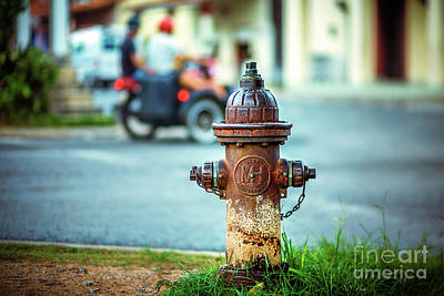 Photograph - 1956 Hydrant  by Jose Rey