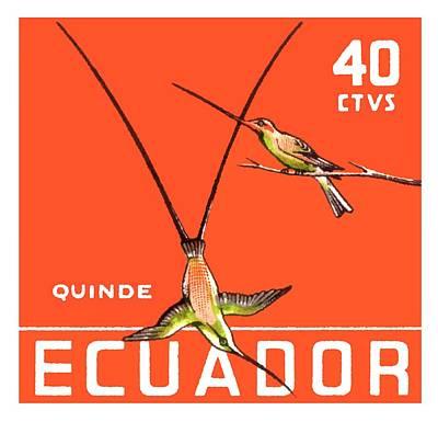 Hummingbird Digital Art - 1958 Ecuador Hummingbirds Postage Stamp by Retro Graphics