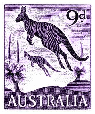 1959 Australia Kangaroo Postage Stamp Art Print
