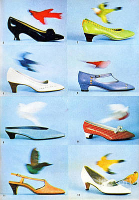 1960 70 Ladies Shoes Advertisement 2 Art Print by R Muirhead Art